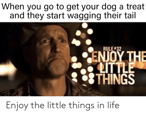 Little: Enjoy the little things in life