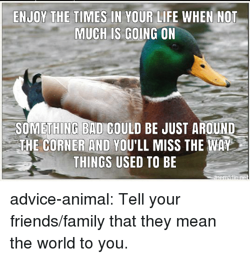 Advice, Bad, and Family: ENJOY THE TIMES IN YOUR LIFE WHEN NOT  MUCH LS GOING ON  SOMETHING BAD COULD BE JUST AROUND  THE CORNER AND YOU'LL MISS THE WAY  THINGS USED TO BE advice-animal:  Tell your friends/family that they mean the world to you.