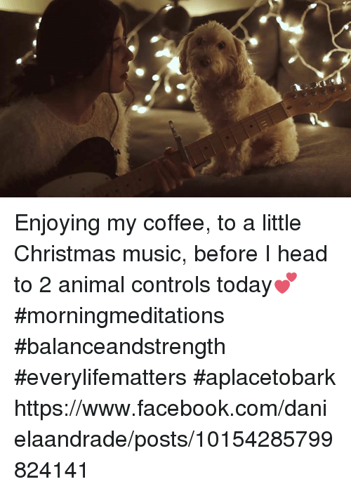 Memes, Music, and Coffee: Enjoying my coffee, to a little Christmas music, before I head to 2 animal controls today💕  #morningmeditations #balanceandstrength #everylifematters #aplacetobark  https://www.facebook.com/danielaandrade/posts/10154285799824141