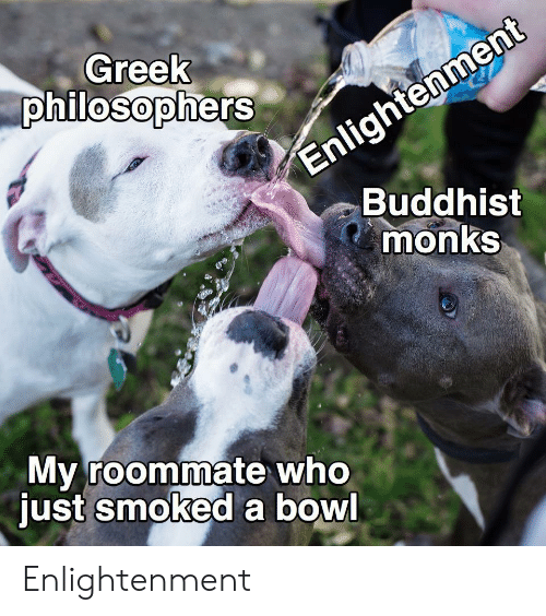 Roommate: Enlightenment  Buddhist  monks  Greek  philosophers  My roommate who  just smoked a bowl Enlightenment