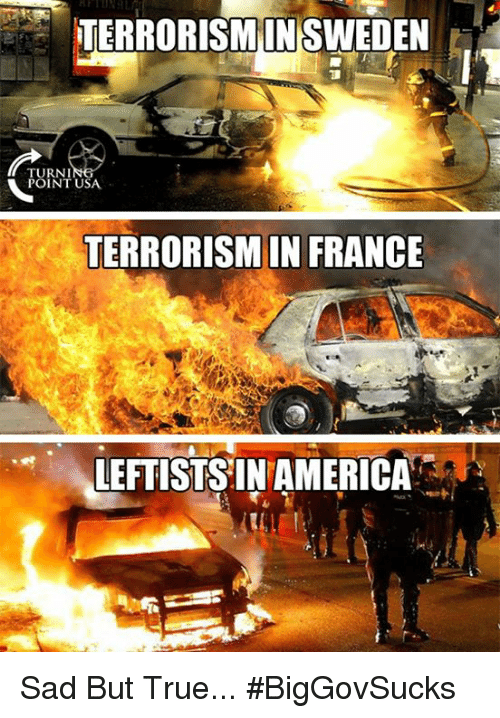 America, Memes, and True: EORISMSWEDEN  IN  TURNI  POINT USA  TERRORISM IN FRANCE  FTISTSIN AMERICA Sad But True... #BigGovSucks