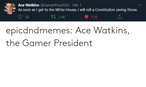 gamer: epicdndmemes:  Ace Watkins, the Gamer President