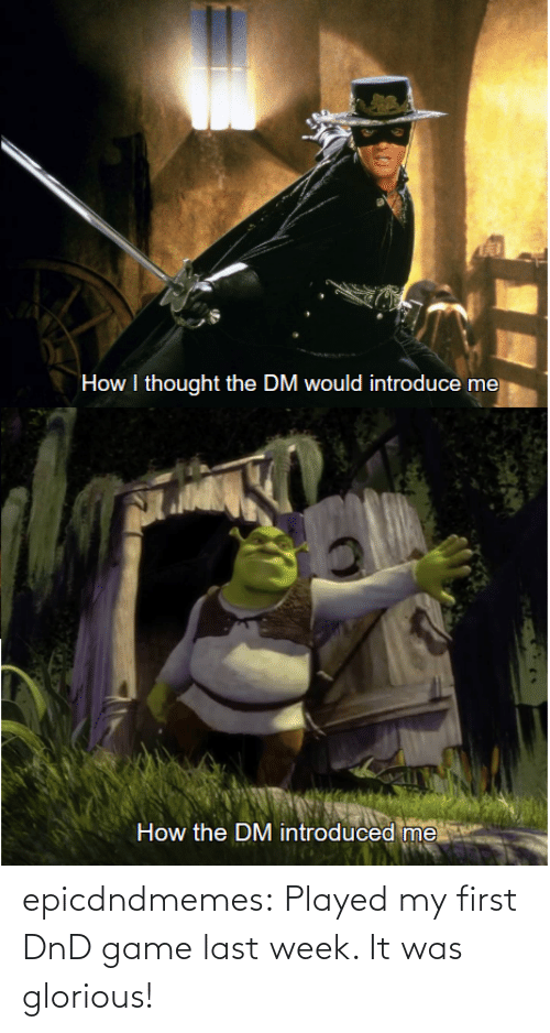 week: epicdndmemes:  Played my first DnD game last week. It was glorious!