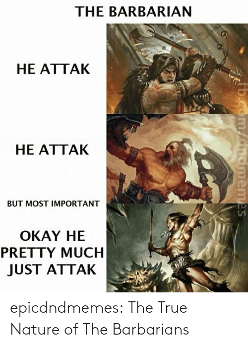 True: epicdndmemes:  The True Nature of The Barbarians