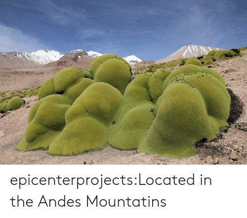 andes: epicenterprojects:Located in the Andes Mountatins