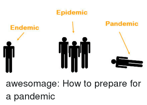 Tumblr, Blog, and How To: Epidemic  Pandemic  Endemic awesomage:  How to prepare for a pandemic