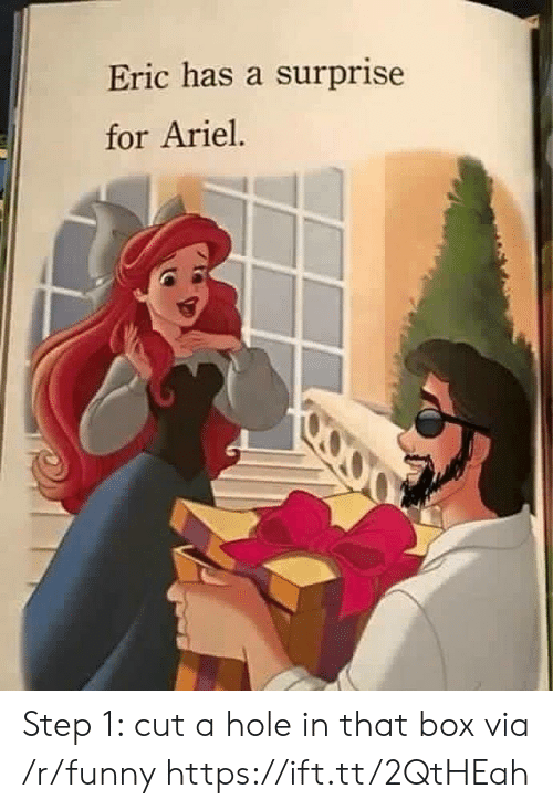 Ariel, Funny, and Box: Eric has a surprise  for Ariel Step 1: cut a hole in that box via /r/funny https://ift.tt/2QtHEah