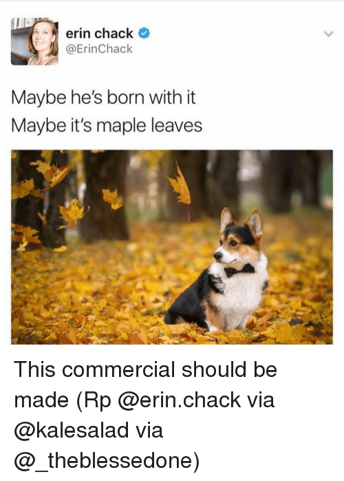 Chack: erin chack  @Erin Chack  Maybe he's born with it  Maybe it's maple leaves This commercial should be made (Rp @erin.chack via @kalesalad via @_theblessedone)