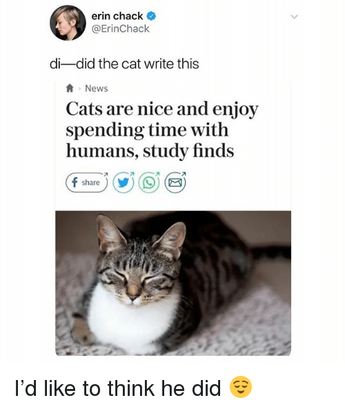 Chack: erin chack  @ErinChack  di-did the cat write this  News  Cats are nice and enjoy  spending time with  humans, study finds  share)) I'd like to think he did 😌