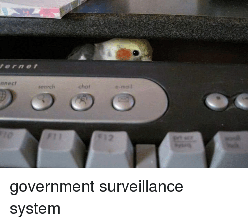 Mail, Search, and Government: ernet  nnect  search  chot  e-mail government surveillance system