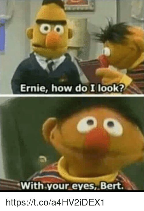 Memes, 🤖, and How: Ernie, how do I look?  With your eyes, Bert https://t.co/a4HV2iDEX1