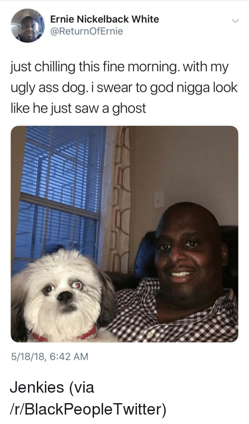 Nickelback: Ernie Nickelback White  @ReturnOfErnie  just chilling this fine morning. with my  ugly ass dog.I swear to god nigga look  like he just saw a ghost  5/18/18, 6:42 AM <p>Jenkies (via /r/BlackPeopleTwitter)</p>