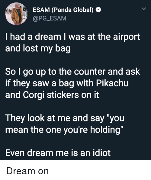 "A Dream, Corgi, and Pikachu: ESAM (Panda Global)  @PG_ESAM  I had a dream I was at the airport  and lost my bag  So I go up to the counter and ask  if they saw a bag with Pikachu  and Corgi stickers on it  They look at me and say ""you  mean the one you're holding""  Even dream me is an idiot Dream on"