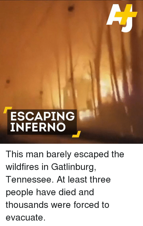 Memes, Tennessee, and 🤖: ESCAPING  INFERNO This man barely escaped the wildfires in Gatlinburg, Tennessee. At least three people have died and thousands were forced to evacuate.