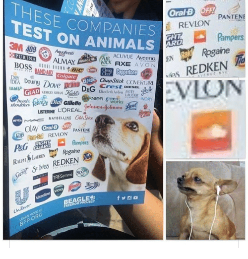 "Animals, Avon, and Head: ESE COMPANIES  TEST ON ANIMALS  OralB OFF  REVLON  PANTENE  Pampers  3M 409Aquafresh  FURINA ALMAY  ane  BOSS ili i."" Ⅲ.?@e  DO BANDAD  ACUVUE Aveeno  WICK AXE AVON  ARMORA  BOSS BANDAD, ''im@o ⑤囲CUpafone @  DAID  ● es  REDKEN  Colgate  CLORO  CLOROX Chap Stick CONERGIRI  Crest DIESEL hadk  ove  IAMS  GLAD  head&  LAUDER  Dial Gillette  IVORY  shouders febre e Dial Gillette  works  LISTERINE  MO= MAYBELLINE ad Ace  PANTEN  neSl REVLON PANTENE  HIVEA  eSREVLON  Rogaine  STN  Secret SrMes REDKEN  TR  fゾ凾ロ  BEAGLE  FREEDOM PROJECT  Unileve  BFP ORO"