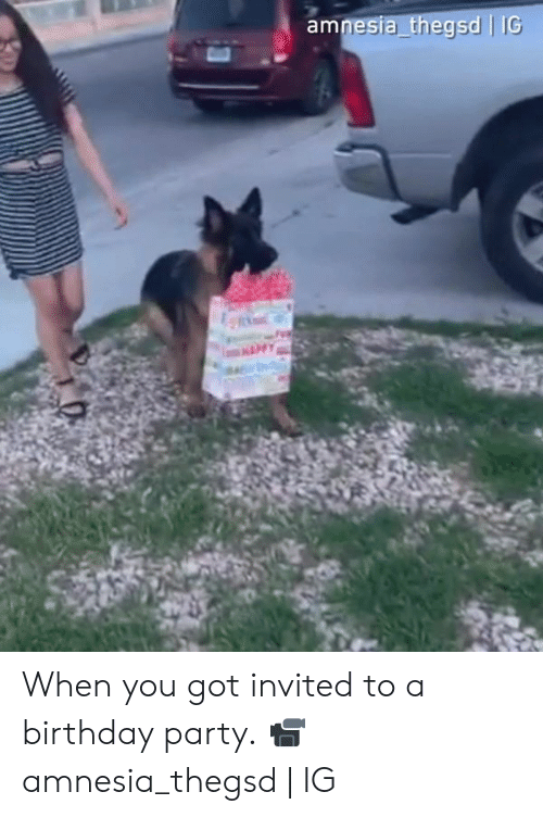 Birthday, Dank, and Party: esia thegsd   IG When you got invited to a birthday party.  📹amnesia_thegsd   IG