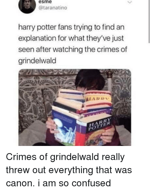 So Confused: esme  @taranatino  harry potter fans trying to find an  explanation for what they've just  seen after watching the crimes of  grindelwald  HARD Crimes of grindelwald really threw out everything that was canon. i am so confused