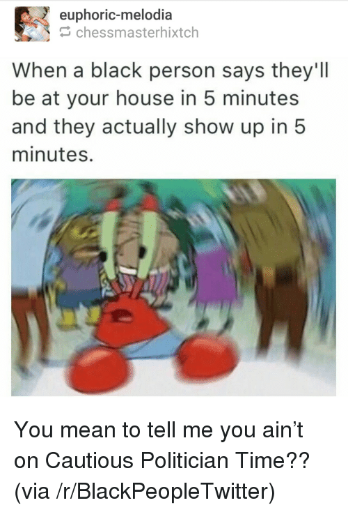 You Mean To Tell Me: euphoric-melodia  chessmasterhixtch  When a black person says they'II  be at your house in 5 minutes  and they actually show up in 5  minutes. <p>You mean to tell me you ain&rsquo;t on Cautious Politician Time?? (via /r/BlackPeopleTwitter)</p>