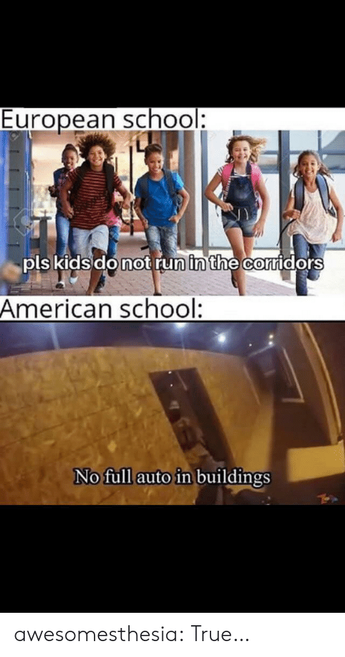 Run, School, and True: European school:  pls kids do not run in the corridors  American school:  No full auto in buildings awesomesthesia:  True…