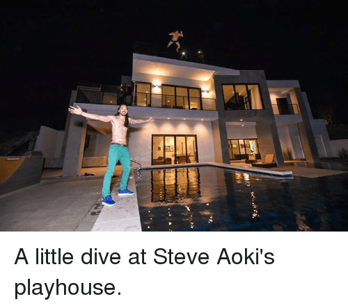 Memes, Steve Aoki, and 🤖: ev A little dive at Steve Aoki's playhouse.