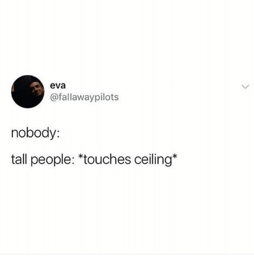 Eva, People, and Nobody: eva  @fallawaypilots  nobody:  tall people: *touches ceiling*