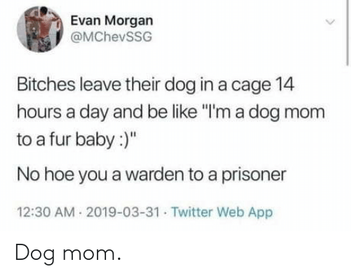 "cage: Evan Morgan  @MChevSSG  Bitches leave their dog in a cage 14  hours a day and be like ""I'm a dog mom  to a fur baby:  No hoe you a warden to a prisoner  12:30 AM 2019-03-31 Twitter Web App Dog mom."