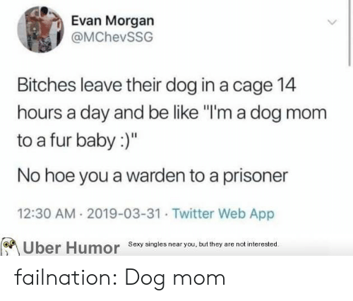"cage: Evan Morgan  @MChevSSG  Bitches leave their dog in a cage 14  hours a day and be like ""I'm a dog mom  to a fur baby:)""  No hoe you a warden to a prisoner  12:30 AM 2019-03-31 Twitter Web App  Sexy singies near you, but they are not interested  Uber  Humor failnation:  Dog mom"