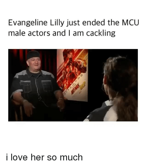 Love, Memes, and Evangeline Lilly: Evangeline Lilly just ended the MCU  male actors and I am cackling i love her so much