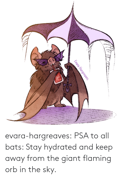 The Sky: evara-hargreaves:  PSA to all bats: Stay hydrated and keep away from the giant flaming orb in the sky.