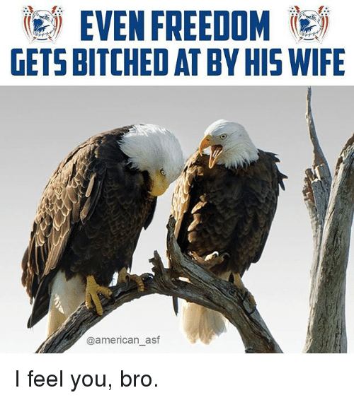 Memes, American, and Wife: EVEN FREEDOM )  GETS BITCHED AT BY HIS WIFE  @american as I feel you, bro.