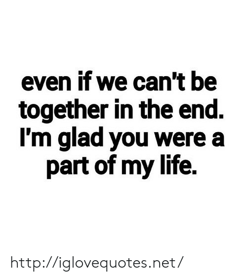 Life, Http, and Net: even if we can't be  together in the end.  I'm glad you were a  part of my life. http://iglovequotes.net/
