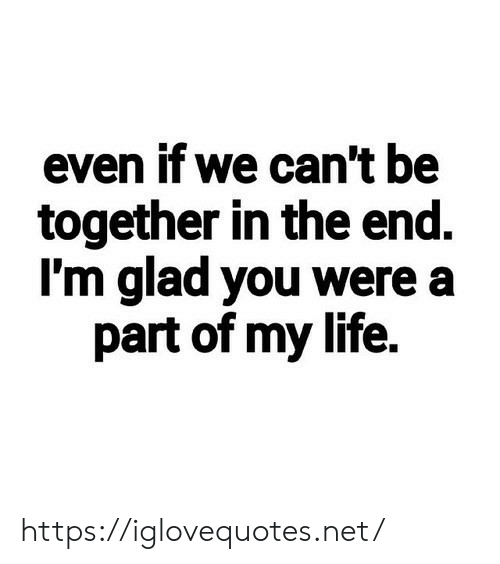 Life, Net, and You: even if we can't be  together in the end.  I'm glad you were a  part of my life. https://iglovequotes.net/