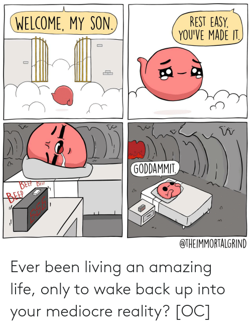 mediocre: Ever been living an amazing life, only to wake back up into your mediocre reality? [OC]