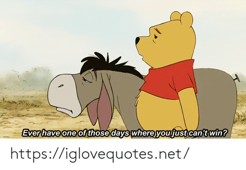 Net, One, and You: Ever have one of those days where you just can't win? https://iglovequotes.net/