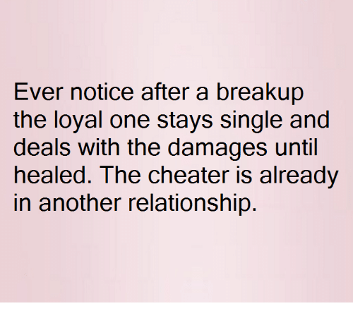 Relationships, Single, and Another: Ever notice after a breakup  the loyal one stays single and  deals with the damages until  healed. The cheater is already  in another relationship.