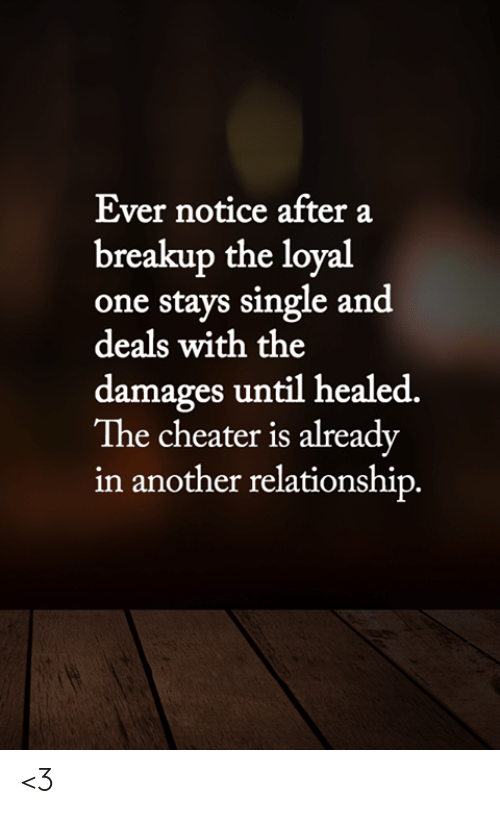 Memes, Single, and 🤖: Ever notice after a  breakup the loyal  one stays single and  deals with the  damages until healed.  The cheater is already  in another relationship. <3