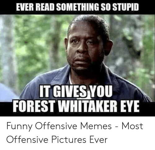 Forest Whitaker, Funny, and Memes: EVER READ SOMETHING SO STUPID  IT GIVES YOU  FOREST WHITAKER EYE Funny Offensive Memes - Most Offensive Pictures Ever