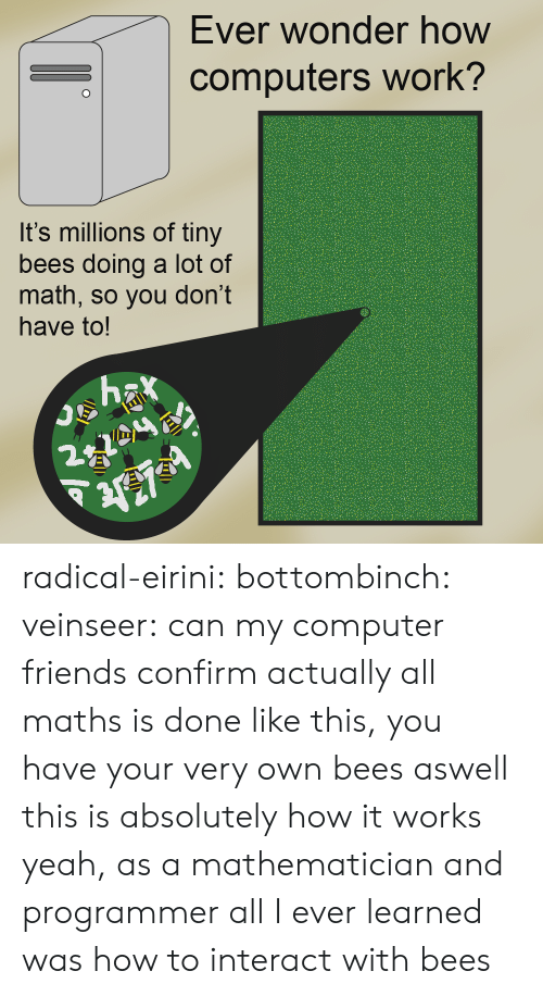 Computers, Friends, and Target: Ever wonder how  computers work?  It's millions of tiny  bees doing a lot of  math, so you don't  have to!  2. radical-eirini:  bottombinch:  veinseer: can my computer friends confirm actually all maths is done like this, you have your very own bees aswell  this is absolutely how it works yeah, as a mathematician and programmer all I ever learned was how to interact with bees