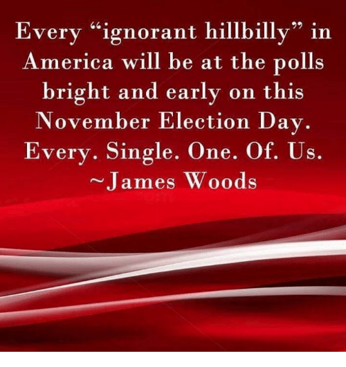 """America, Ignorant, and Memes: Every """"ignorant hillbilly"""" in  America will be at the polls  bright and early on this  November Election Day.  Every. Single. One. Of. Us.  James Woods"""