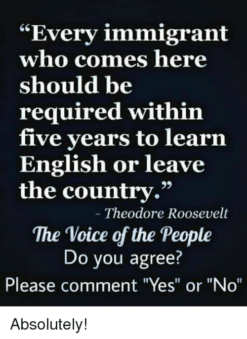 """Memes, The Voice, and Voice: """"Every immigrant  who comes here  should be  required within  five years to learn  English or leave  the country.""""  29  Theodore Roosevelt  The Voice of the People  Do you agree?  Please comment """"Yes"""" or """"No"""" Absolutely!"""