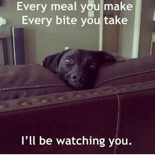 Ill Be Watching You: Every meal you make  Every bite you take  I'll be watching you.