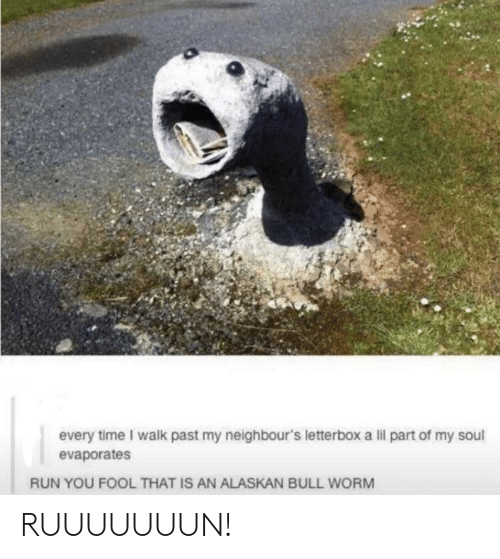 Run, Time, and Alaskan Bull Worm: every time I walk past my neighbour's letterbox a lil part of my soul  evaporates  RUN YOU FOOL THAT IS AN ALASKAN BULL WORM RUUUUUUUN!