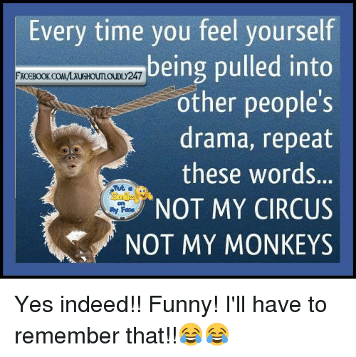 Memes, Indeed, and 🤖: Every time you feel yourself  being pulled into  FACEBOOK COMMAUGHOUTLOUDLy 247  other people's  drama, repeat  these words.  NOT MY CIRCUS Yes indeed!! Funny! I'll have to remember that!!😂😂
