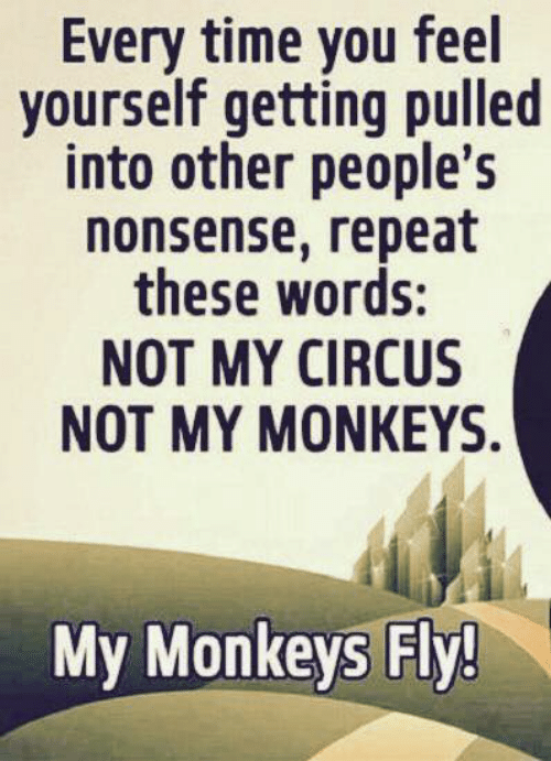 monkeys: Every time you feel  yourself getting pulled  into other people's  nonsense, repeat  these words:  NOT MY CIRCUS  NOT MY MΟNΚΕYS.  My Monkeys Fly!