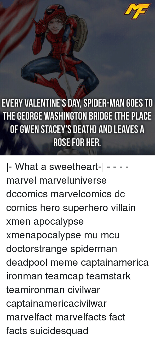 Memes, George Washington, and DC Comics: EVERY VALENTINE'S DAY, SPIDER-MAN GOES TO  THE GEORGE WASHINGTON BRIDGE (THE PLACE  OF GWEN STACEY'S DEATH) AND LEAVES A  ROSE FOR HER |- What a sweetheart-| - - - - marvel marveluniverse dccomics marvelcomics dc comics hero superhero villain xmen apocalypse xmenapocalypse mu mcu doctorstrange spiderman deadpool meme captainamerica ironman teamcap teamstark teamironman civilwar captainamericacivilwar marvelfact marvelfacts fact facts suicidesquad