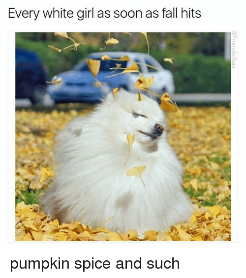 Fall, Funny, and Soon...: Every white girl as soon as fall hits  TI pumpkin spice and such