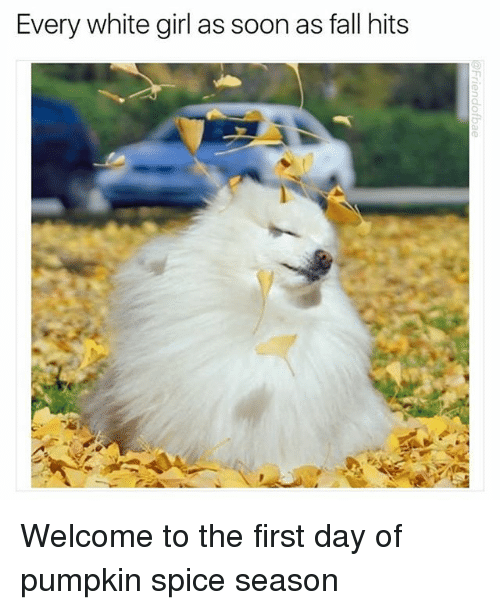 Fall, Memes, and Soon...: Every white girl as soon as fall hits Welcome to the first day of pumpkin spice season