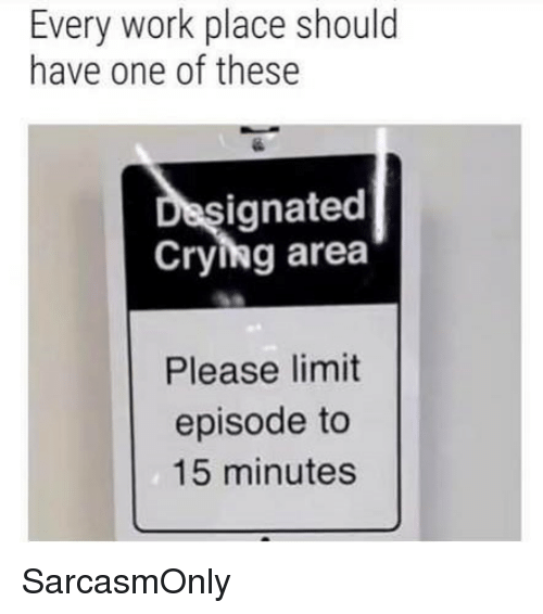 Crying, Funny, and Memes: Every work place should  have one of these  ignated  Crying area  Please limit  episode to  15 minutes SarcasmOnly