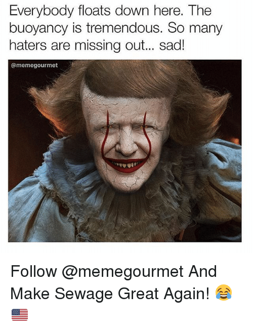 Dank Memes, Sad, and Down: Everybody floats down here. The  buoyancy is tremendous. So many  haters are missing out.. sad!  @memegourmet Follow @memegourmet And Make Sewage Great Again! 😂🇺🇸