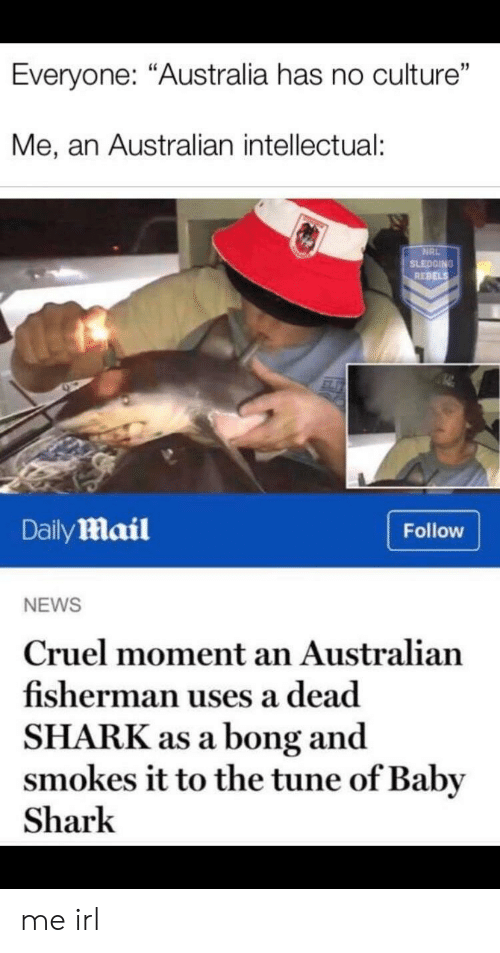 "Bong: Everyone: ""Australia has no culture""  Me, an Australian intellectual:  NRL  SLEDGING  REBELS  DailyMail  Follow  NEWS  Cruel moment an Australian  fisherman uses a dead  SHARK as a bong and  smokes it to the tune of Baby  Shark me irl"